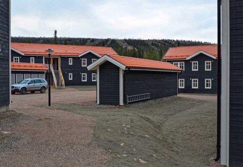 Budowa drewnianych domów,  w ośrodku narciarskim, Szwecja